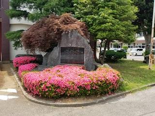 正門前のつづじの花が満開です
